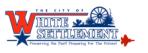WS City Logo