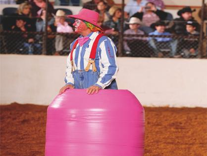 stock show pink