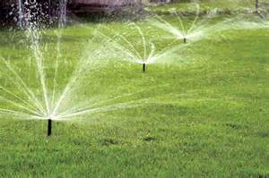 yard watering