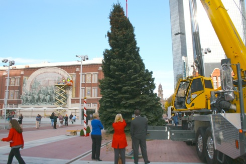 Mayor Betsy Price (left) looks on with other city officials as the 55-foot blue spruce is raised into position in the newly opened Sundance Square Plaza. The tree lighting will take place this Saturday night at 6:30 p.m.