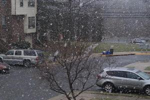 snow8_606