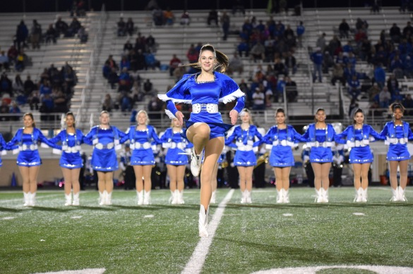 The Brewer Honeycombs entertain the Aledo crowd.  Photo by Ellie Posey